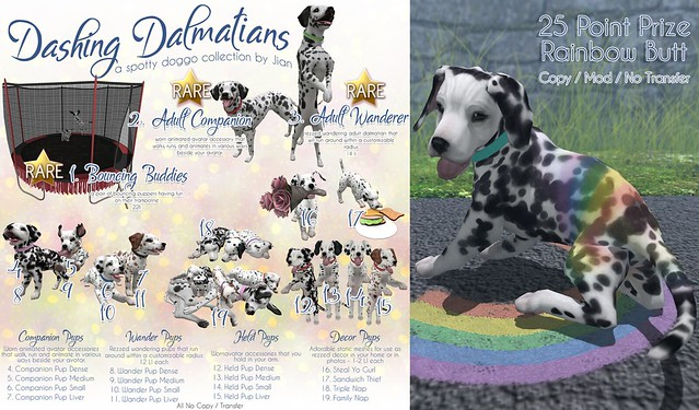 Dashing Dalmatians @ The Epiphany!