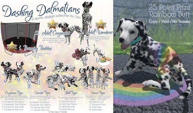 Dashing Dalmatians @ The Epiphany!