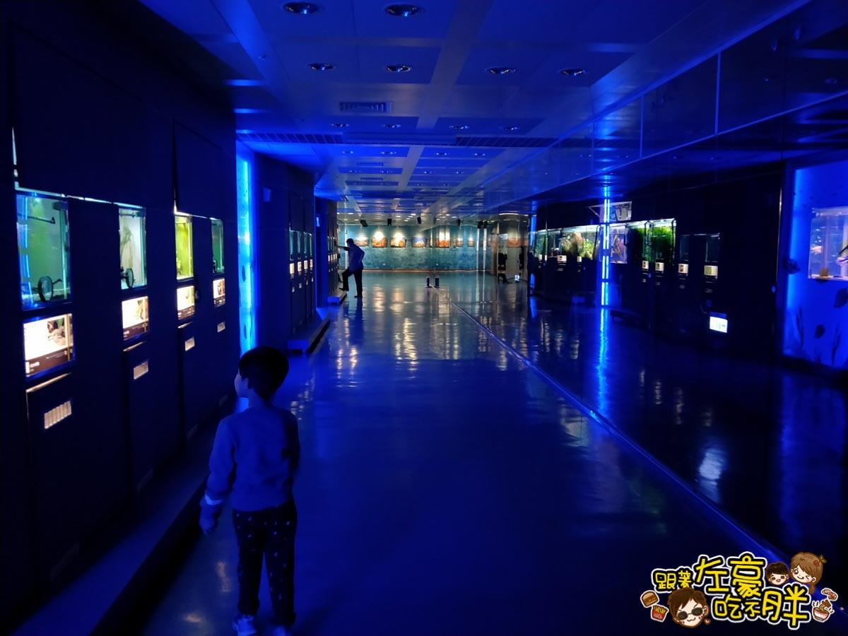 屏東生技園區國際級水族展示廳-35