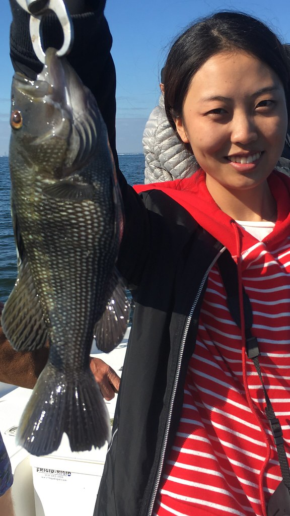 Tampa fishing trip! Black Seabass www.tampafishingcharters.com