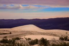Mequite-Dune
