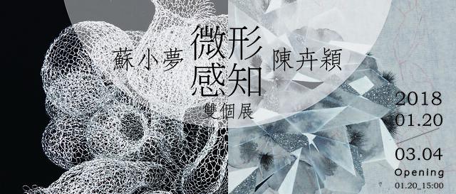 《微形感知》|蘇小夢 陳卉穎雙個展