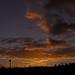 Sunrise:  16/365