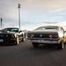 Mustang and Maverick