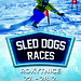SLED DOG races Rokytnice