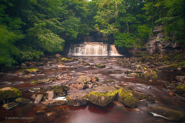 COTTER FORCE, Canon EOS 5D MARK IV, Sigma 24-70mm f/2.8 EX