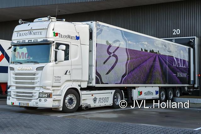 Scania R560  P  TransWhite  SALM  180201-161-C2 ©JVL.Holland