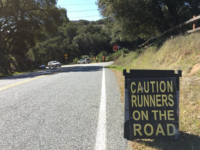 Runners on the road.