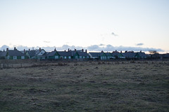 Houses on Links Road, Bamburgh