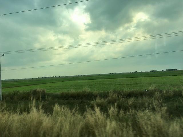 見渡す限りの畑