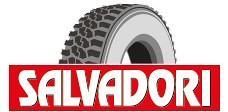 Логотип компании Salvadori