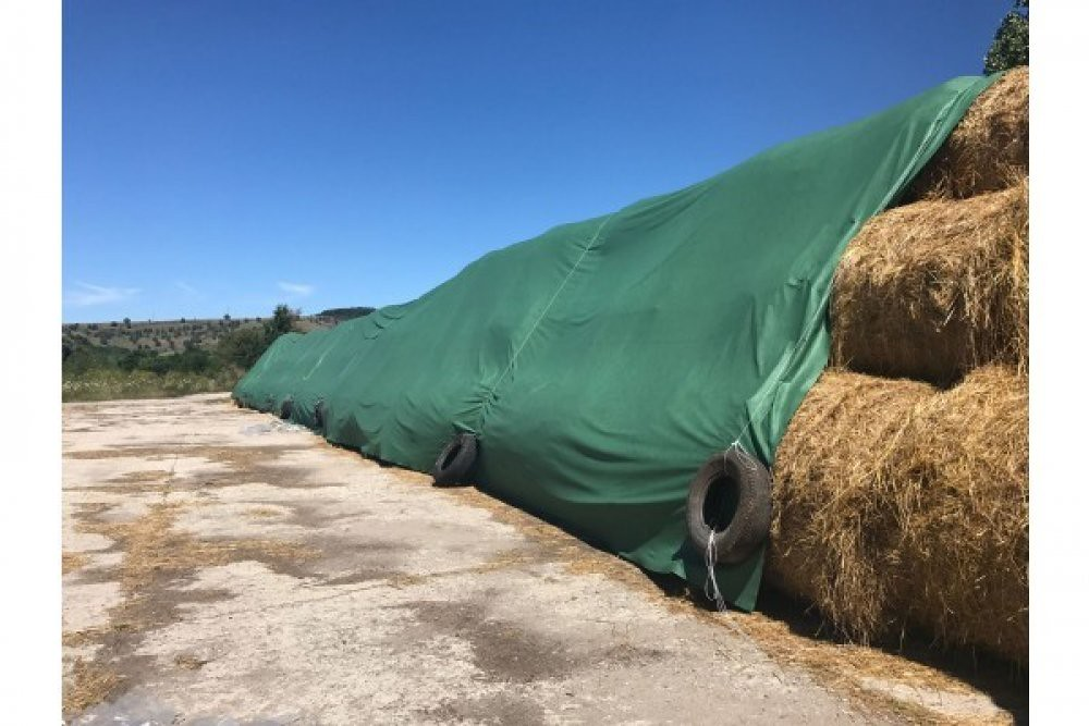 Foliile de agricultura, solutii pentru productivitatea si siguranta fermei tale