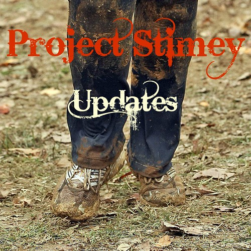 project-stimey-updates