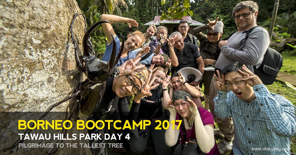 Borneo Bootcamp 2017 - Tawau Hills Park Day 4
