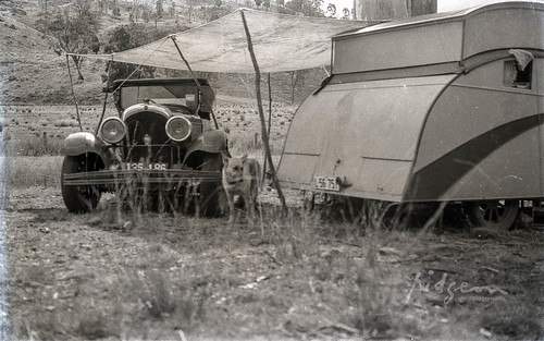 Campsite at Bylong Valley Way, 5-17 August 1937