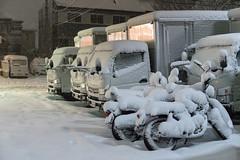 Tokyo Snowpocaclypse 2018
