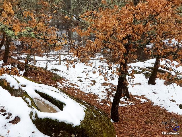 Necrópolis de Revenga y La Cerca con nieve 26