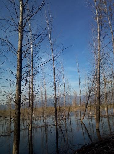 greece doirani lake kilkis