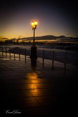 playa-san-lorenzo-gijon-asturias-ola-temporal-beach-wave-xixon-12