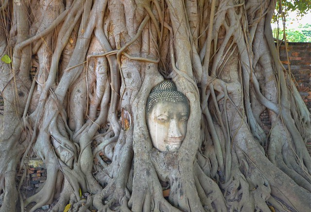bangkok itinerary day tours from bangkok ayutthaya
