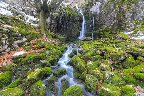 Parque Natural de Gorbeia #DePaseoConLarri #Flickr -72