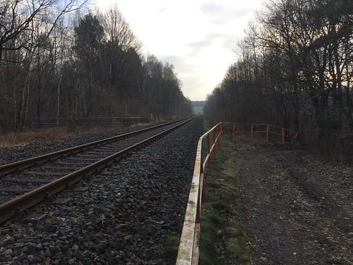 33 Strecke Borna - Großbothen (Wald bei Großbothen)
