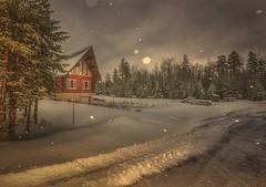 Winter in Mapleton Park, Moncton, NB