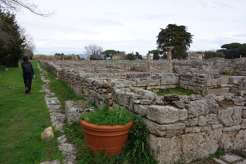 Paestum - near Salerno, Italy