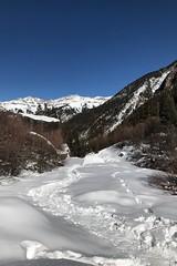 Wed, 2018-01-17 15:05 - Bear Creek Trail