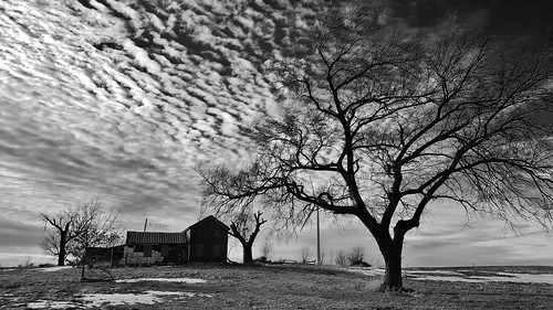 abandoned abandonedhouse abandonedfarm decay ruraldecay forgotten end old shuttered discarded trees clouds sky field abandonedillinois blackandwhite monochrome windfarm