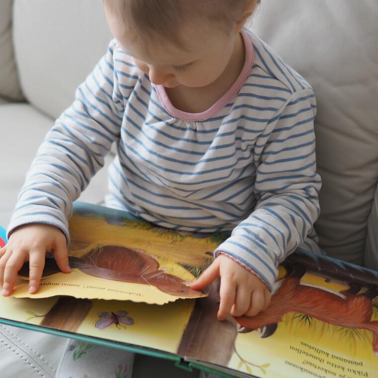 Pikku kettu metsässä kirja 3