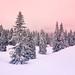 Un petit morceau d'hiver by prenzlauerberg