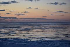Lake Erie sunset - Lakefront Lodge