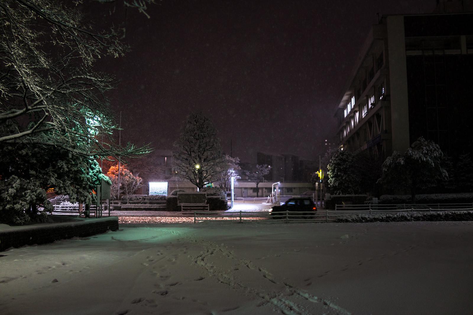 20180122 Snow_3