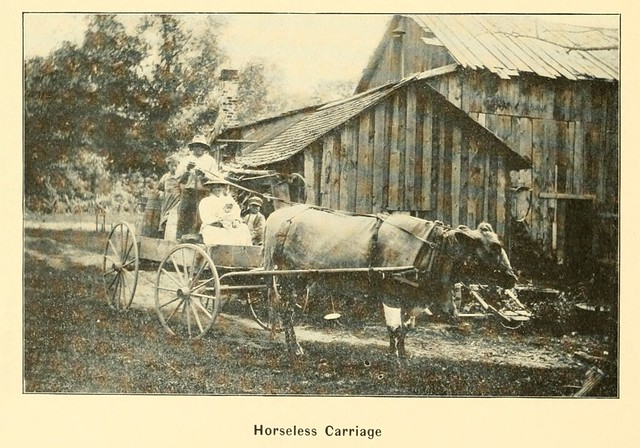 Horseless Carriage near Allegan 1904