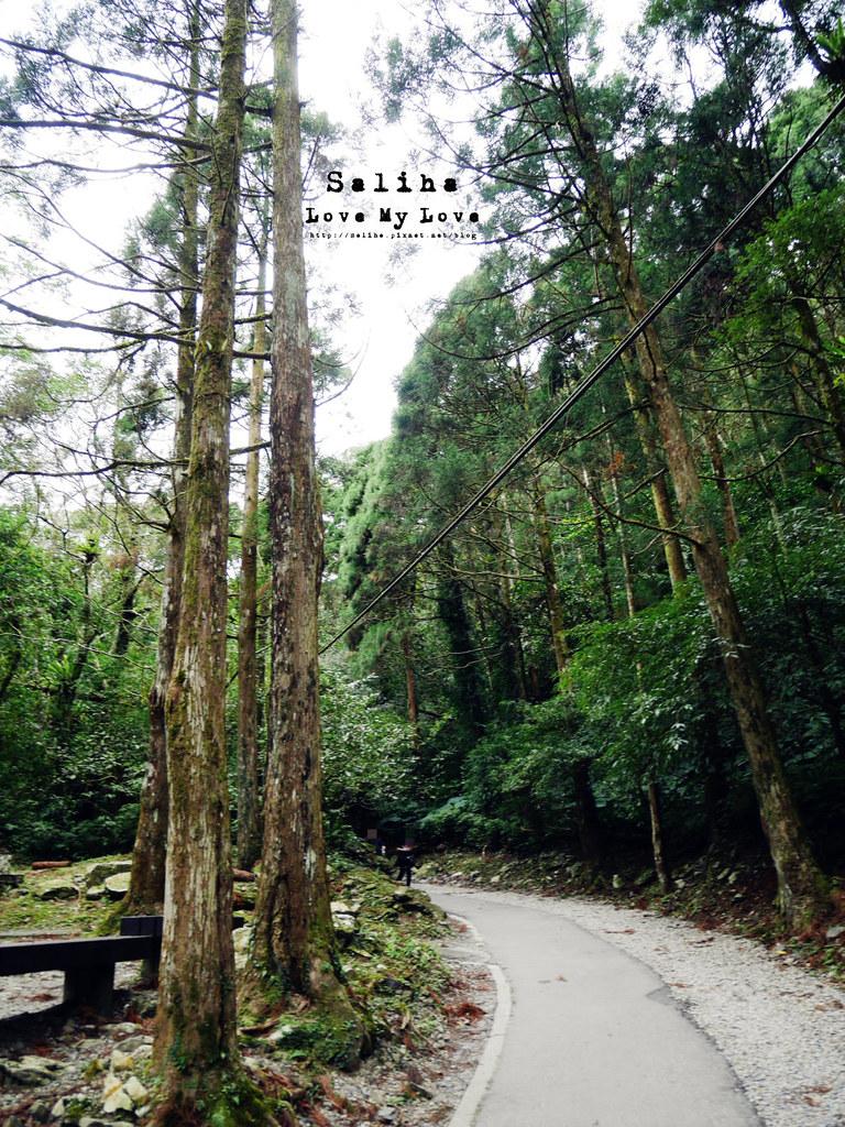 新北三峽一日遊踏青景點推薦滿月圓森林遊樂區 (10)