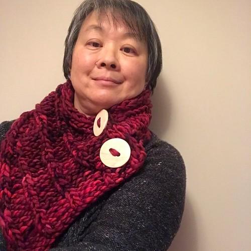Sue2Knits Cozy Cowl by Danielle Comeau knit with Malabrigo Rasta❤️