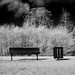 D7K_8125: Park Bench in winter infrared by Colin McIntosh