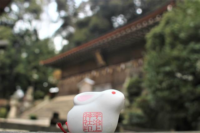 ujigamijinja-gosyuin02049