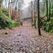 Rishworth Branch former trackbed 16.