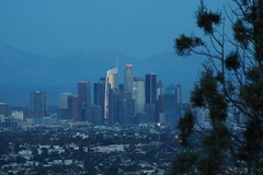 Blue Hour LA Skyline