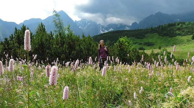 Belianske Tatras, Slovakia