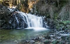 Les Rivières & Cascades Vosgiennes