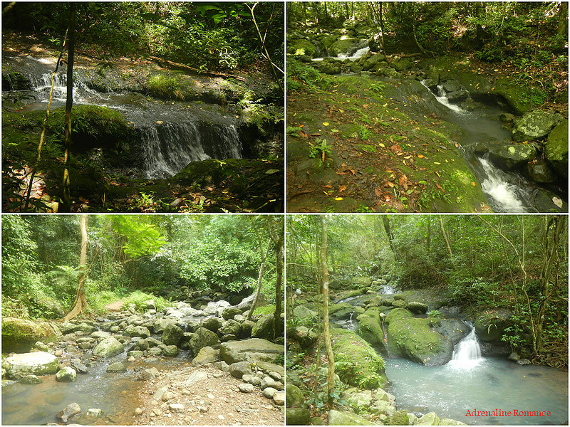 Springs, streams, and rivers