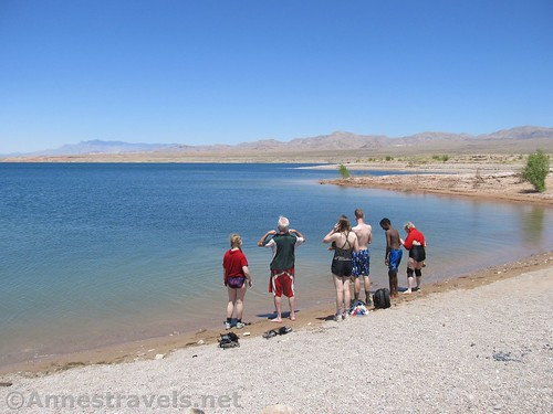 On the swimming beach at Echo Bay in Lake Mead National Recreation Area, Nevada