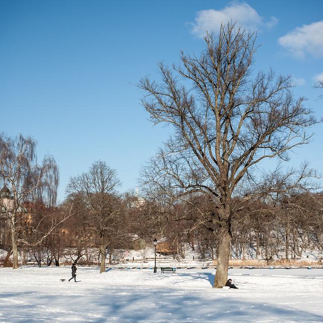 Kungl. Djurgården