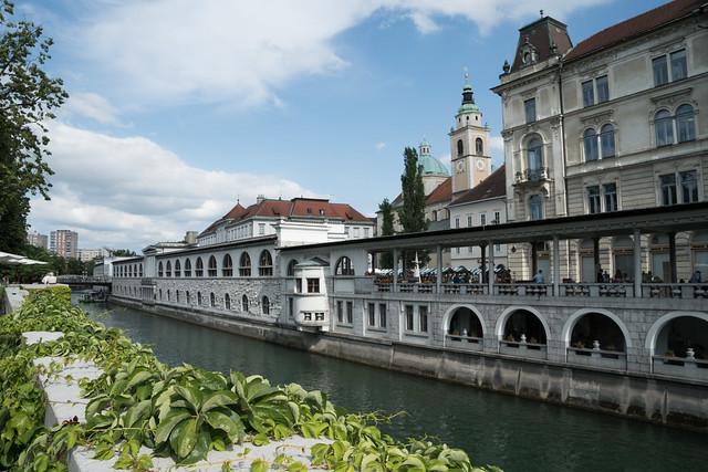 Walking Ljubljana