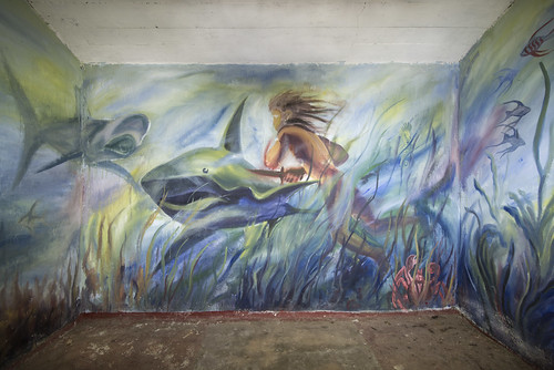 Dramatic mural inside an Soviet barrack. It seems to me that the diver lost his left forearm and is bleeding. May be it's a movie or story behind the mural.