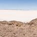 76. Ile Poisson, Salar, Bolivia-43.jpg