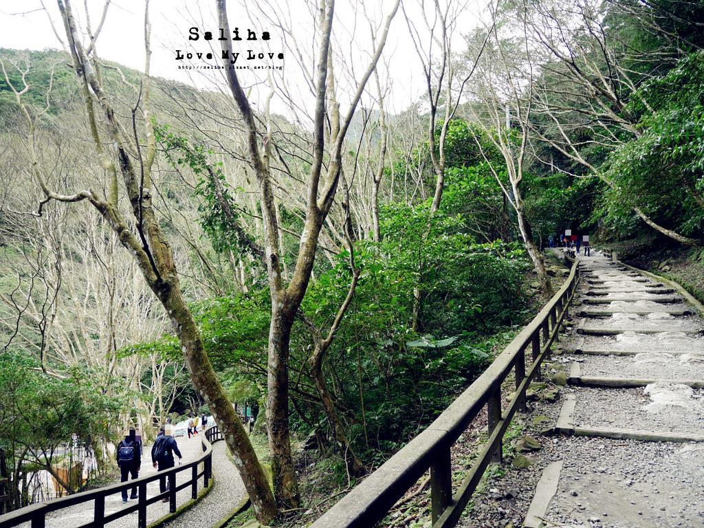 新北三峽一日遊踏青景點推薦滿月圓森林遊樂區 (19)